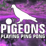 Pigeons Playing Ping Pong